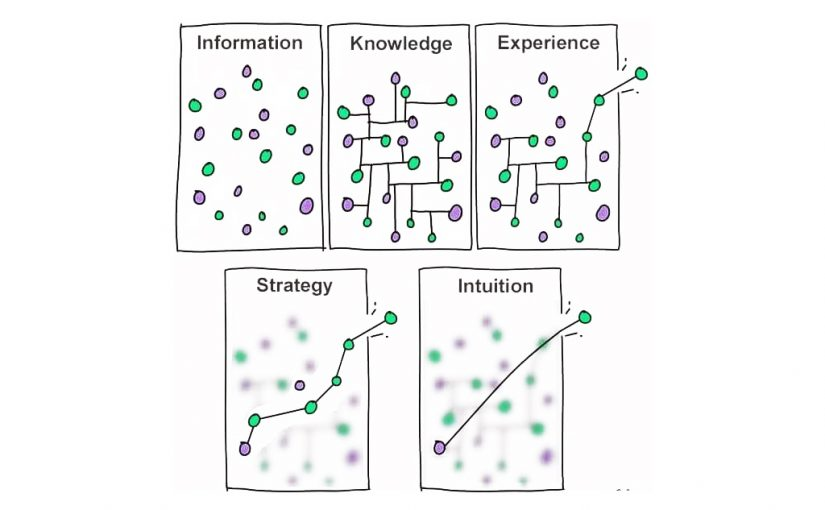 Information vs strategy